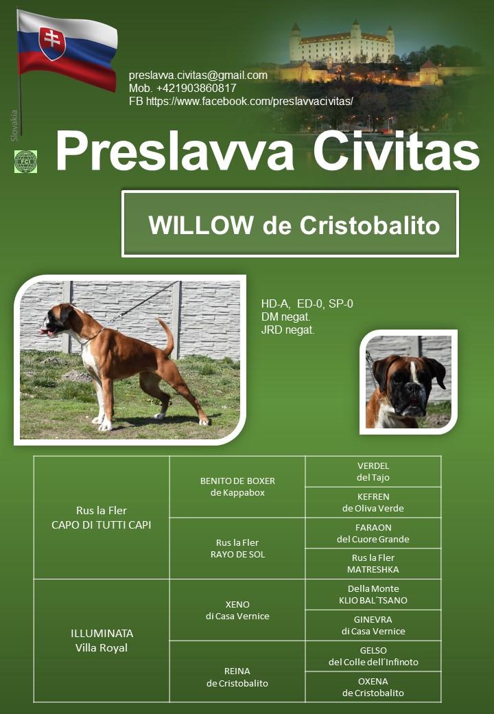 Willo de Cristobalito